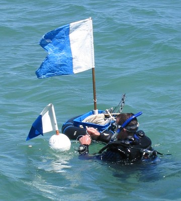 A diver with a dive flag
